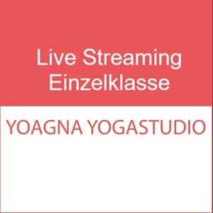 Live Streaming Einzelklasse