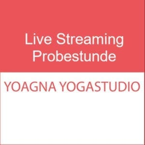 Live Streaming Probestunde